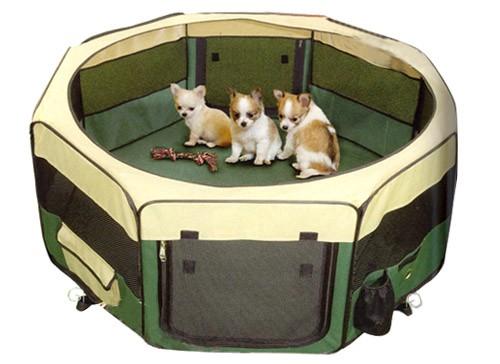 parc pour chiens pour rats aussi pourquoi pas. Black Bedroom Furniture Sets. Home Design Ideas
