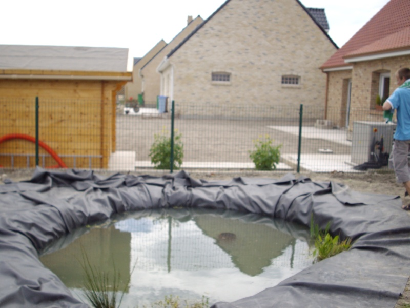 nature bassin la mare et le bassin de jardin naturel afficher le sujet mon premier bassin. Black Bedroom Furniture Sets. Home Design Ideas