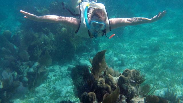 balade catamaran floride key largo quicksilver snorkeling reef roamer