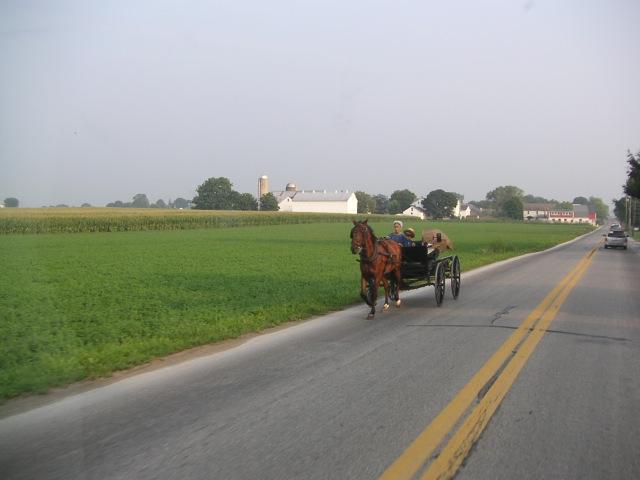 Amish Pennsylavie Lancaster calèche