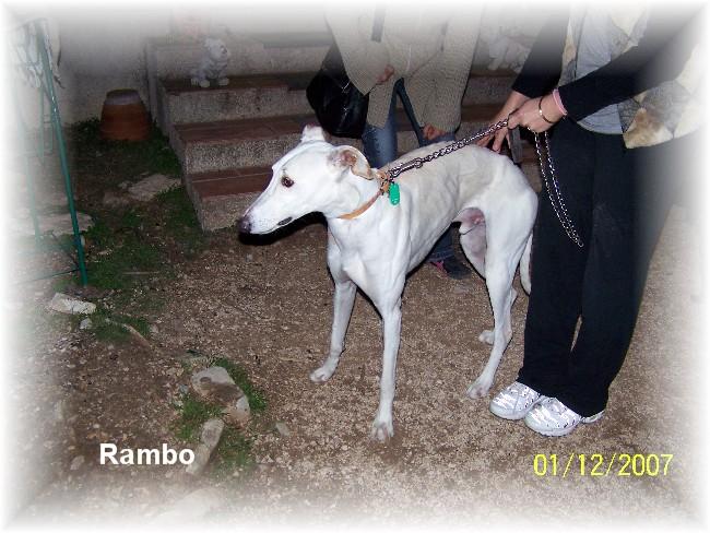 ranbo10.jpg