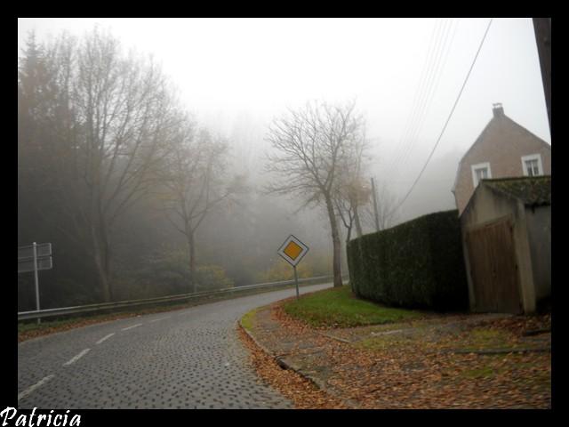 dans le brouillard dans paysages 26410