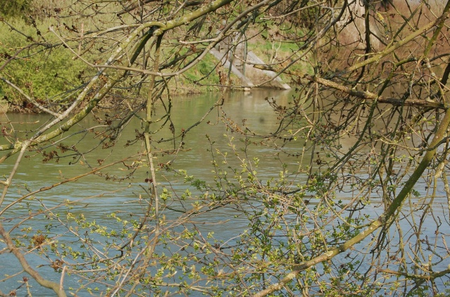 rivier10