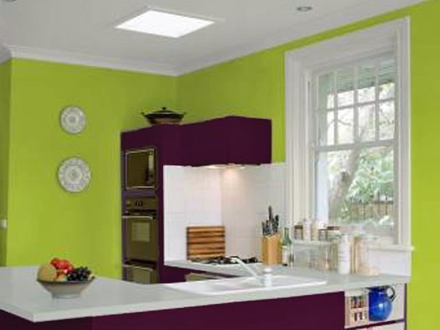 Cuisine gris et vert anis peinture cuisine gris et vert for Moquette bleu canard
