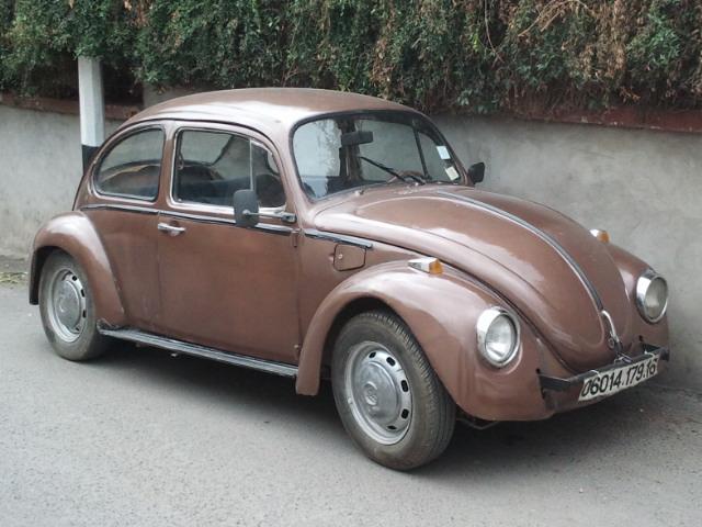voiture coccinelle algerie