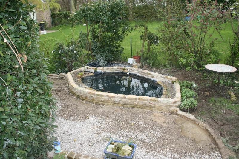 Mon nouveau petit bassin nouvelles photos - Petit bassin d eau dijon ...