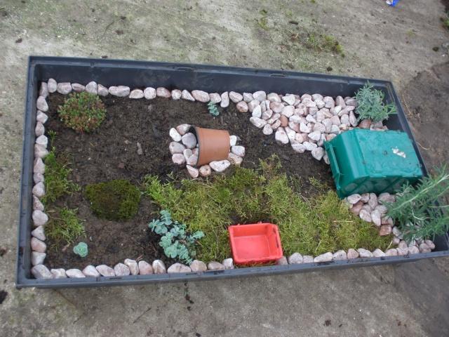 Terrarium d 39 ext rieur pour mon b b for Amenagement jardin pour tortue