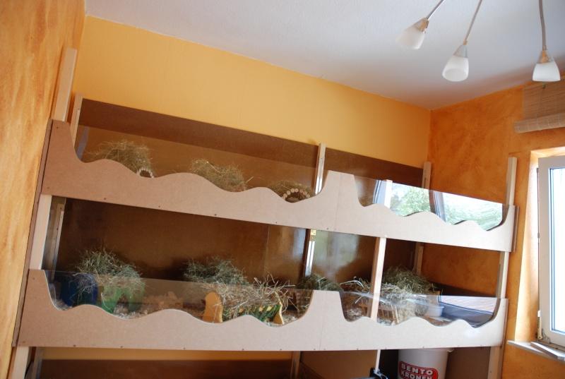 zeigt her eure k fige und st lle. Black Bedroom Furniture Sets. Home Design Ideas