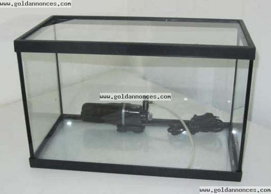 d part aquarium killies page 2. Black Bedroom Furniture Sets. Home Design Ideas