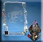 https://i46.servimg.com/u/f46/12/66/96/20/awards10.jpg