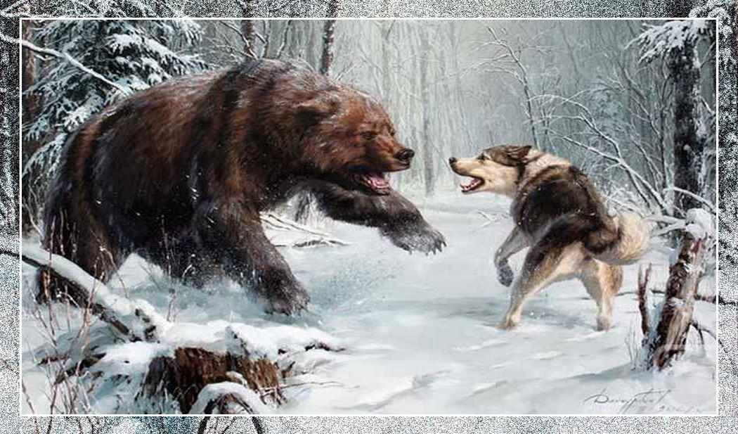 Северные охотничьи и ездовые собаки