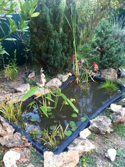 bassin10.jpg