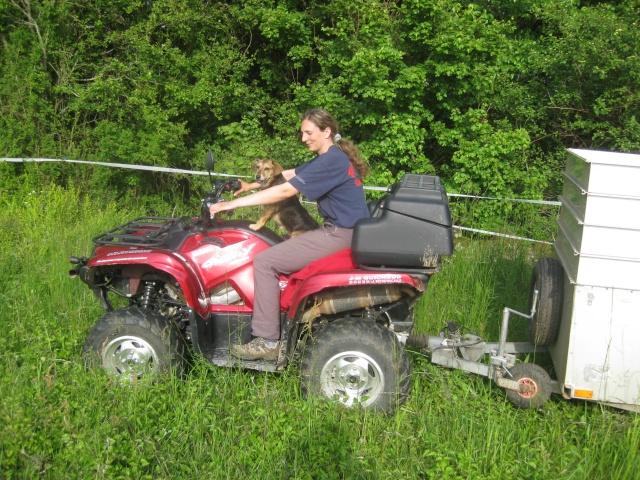 micro tracteur - 1