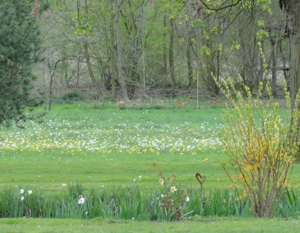 La prairie for Jardin eden prairie