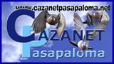 NO CARGA