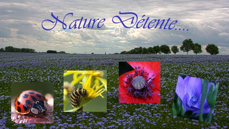 Nature Détente