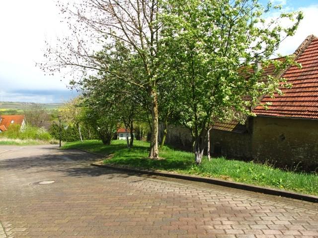 Bermersheim allemagne mes promenades culturelles ii for Jardin hildegarde
