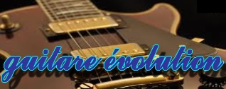 guitare évolution
