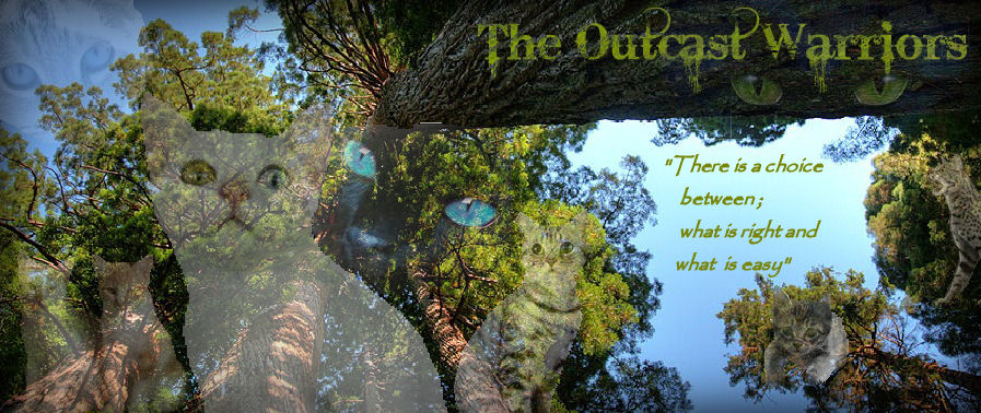 The Outcast Warriors RPG
