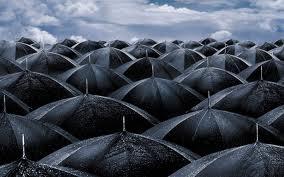 umbrel10.jpg