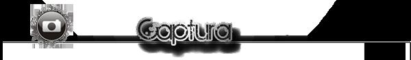 captur10.png