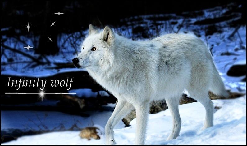 Infinity Wolf