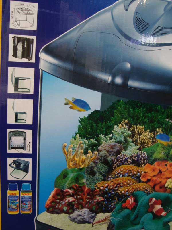 Aquarium eau de mer petit prix chez rey for Aquarium petit prix