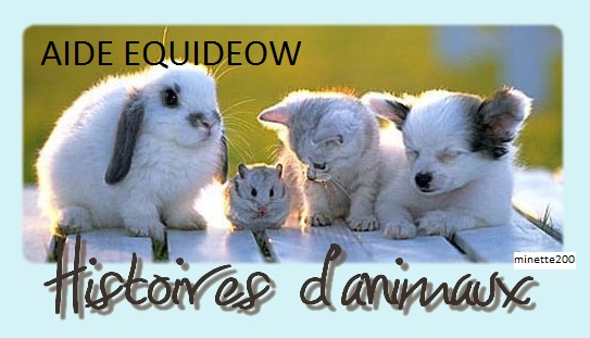 Aide-Equideow