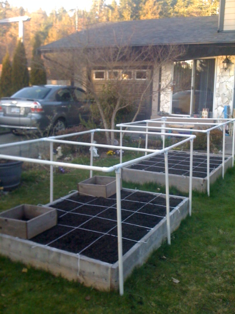 Still have to put the nylon garden fence netting around the cage